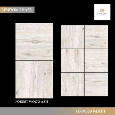 600x600 Wood FOREST WOOD ASH