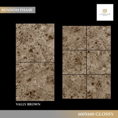 600x600 Glossy VALLY BROWN