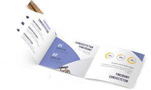 Brochure & Flyer Design