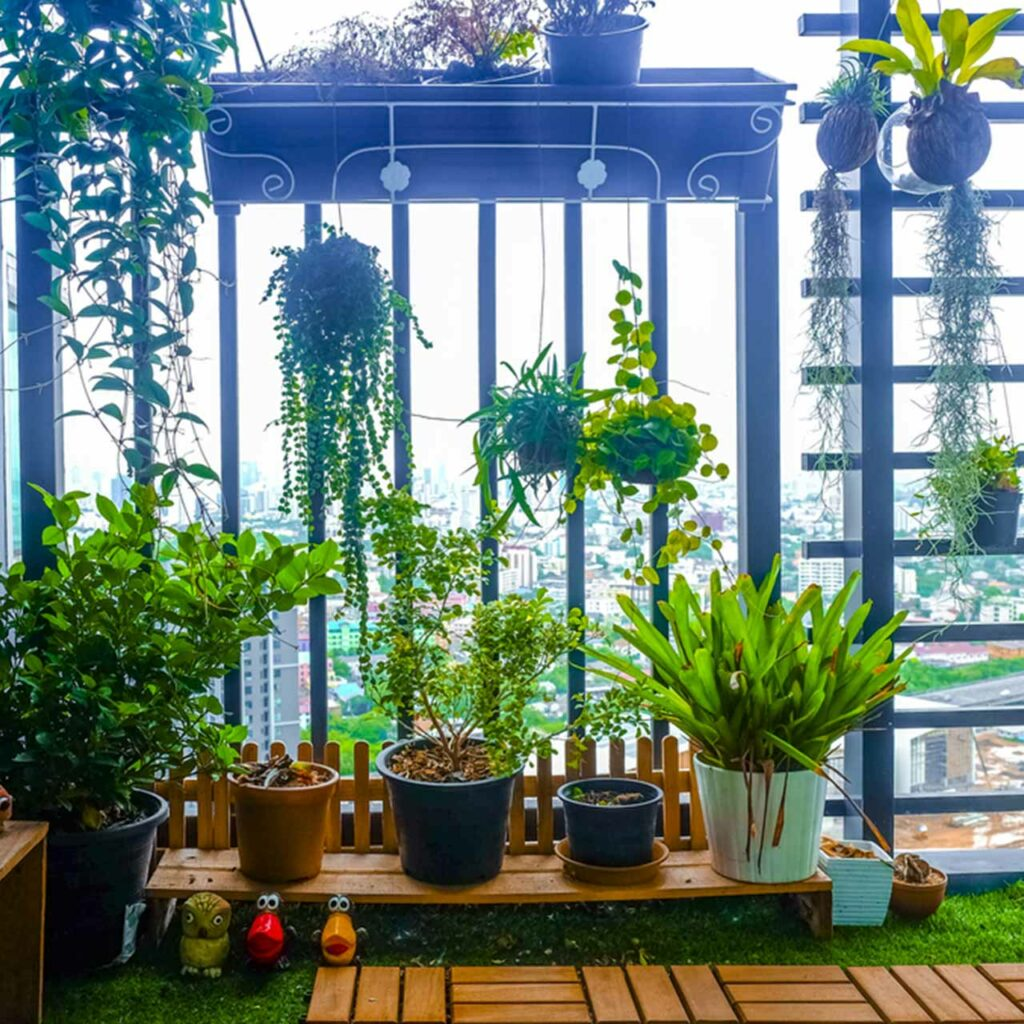 Balcony garden design with lots of greenery and hanging plants everywhere which can be used as balcony garden designs india