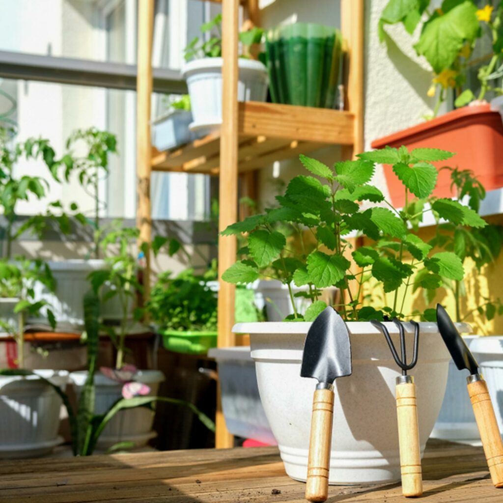 Small beautiful garden with pots and inspires for balcony garden design for home