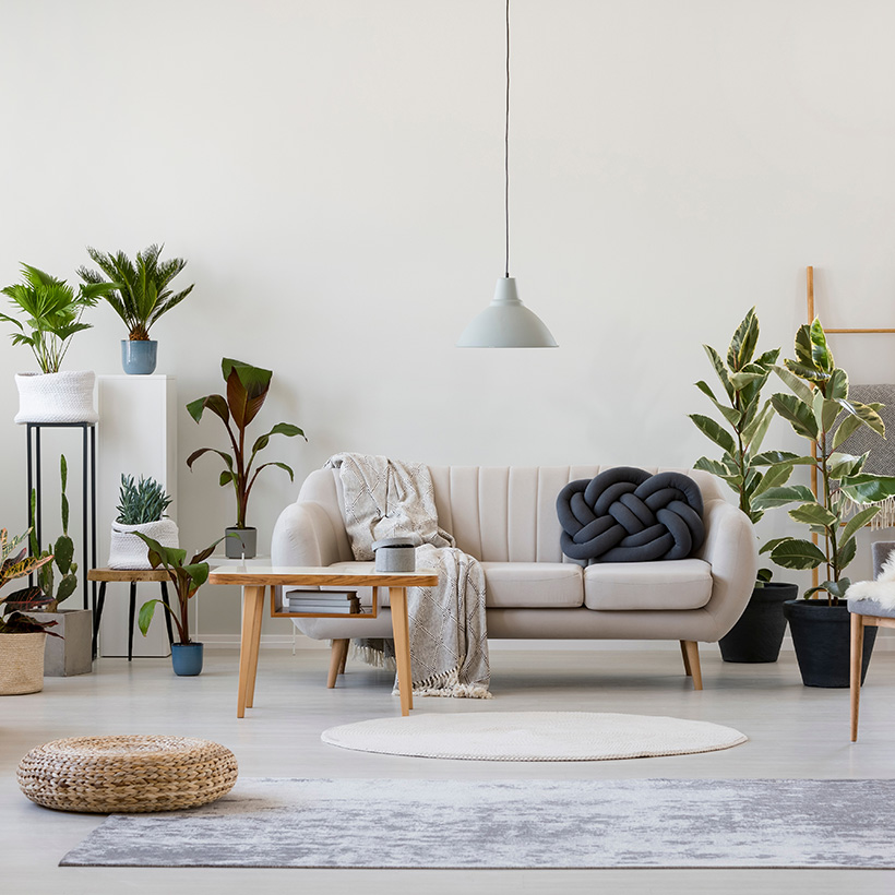 Indian living room with cozy comfort sofa and a lot of plants with a hanging light and small tables in a modern living room design