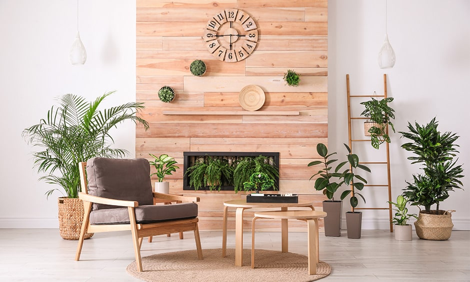 Hanging plant indoor ideas for beach wood wall