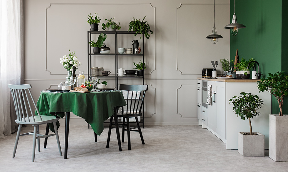Green walled room filled with pots, plants and flowers is a perfect dining room designs for small spaces.