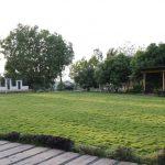farm land sale in jaipur