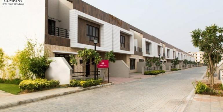 property504_fullimage2