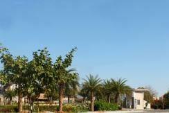 manglam grand city jaipur