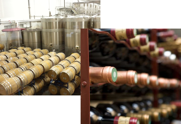 how to start a winery business