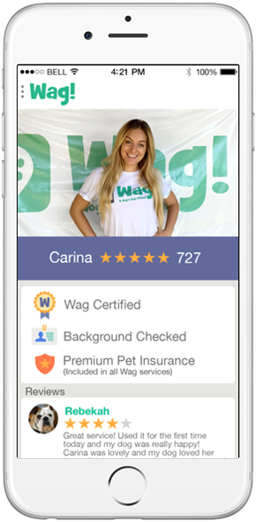 Dog Walking App Like WAG
