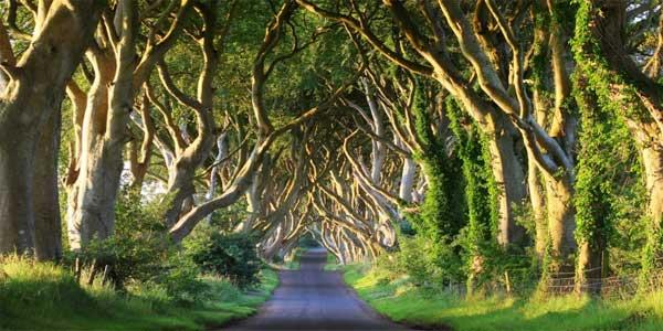 blog_northern_ireland
