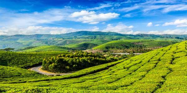 bigstock-Kerala-India-travel-background-71692501