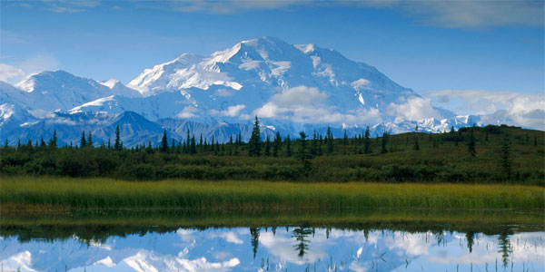 Denali-national-park