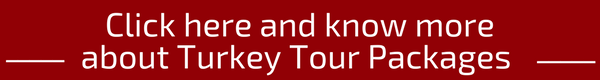 Check out Scandinavia Tour Packages of Flamingo Transworld (3)