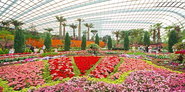 Flower-dome