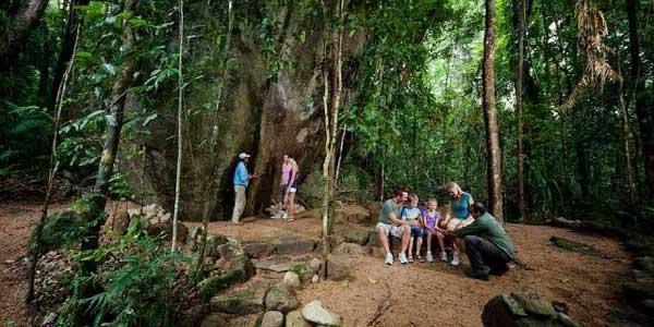 walk-rainforest