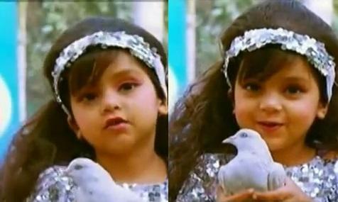 Saniya Touqeer
