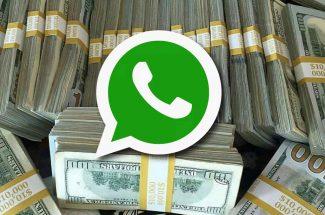 whatsapp and cii