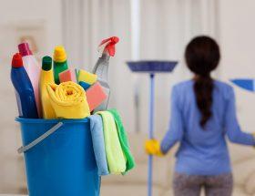 जरूरी है टौयलेट की सही सफाई