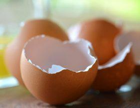 अंडे के छिलके में छिपा है खूबसूरती का राज