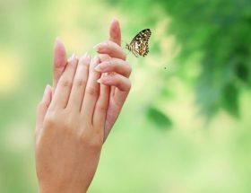 सर्दियों में पाएं कोमल मुलायम हाथ