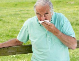 वृद्धों में एलर्जी की समस्या
