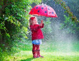 बारिश में छाता खरीदते समय जरूर रखें इन बातों का ध्यान