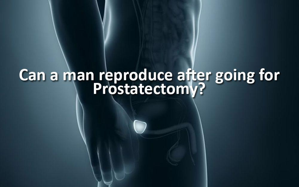 Reproduction after Prostatectomy