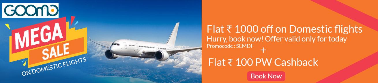 Goomo Flight Offer