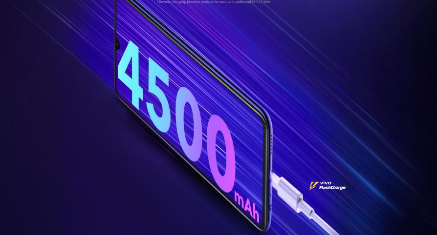 Vivo-Z1-x-Battery-Backup-4500-mAh-2019