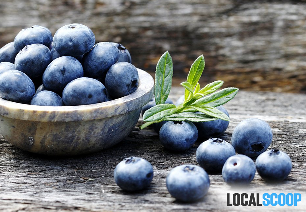 Is Blueberries Worthy of the Hype as Superfoods?