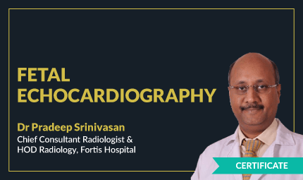 Certificate Course in Fetal Echocardiography