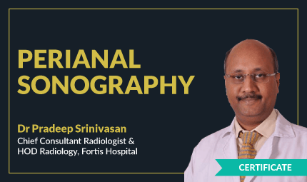 Course in Perianal Sonography