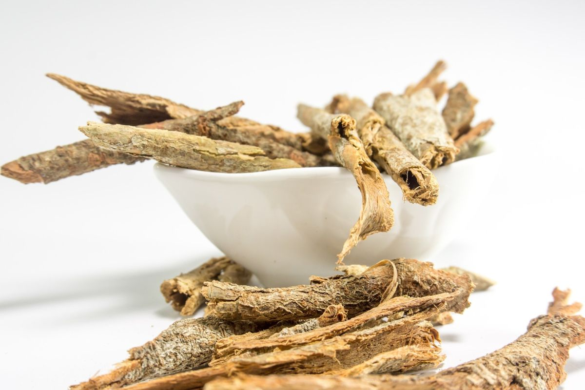 What are the best Ayurvedic herbs for immunity?