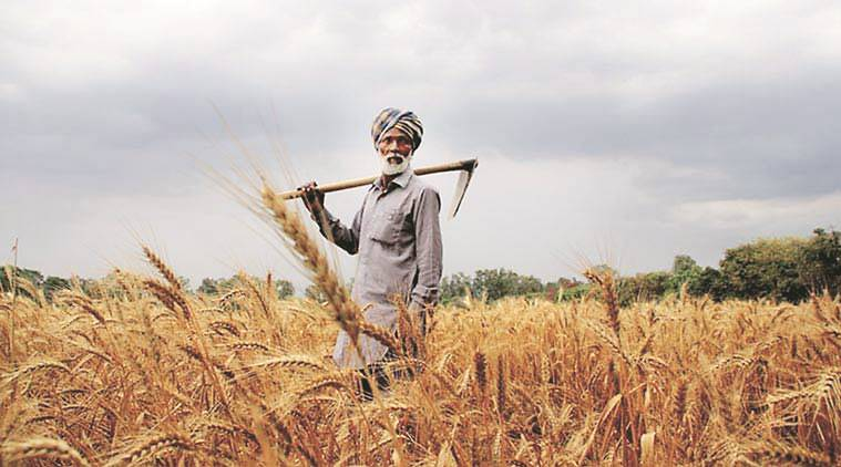 Farmers Fresh Zone raises undisclosed funds from Indian Angel Network