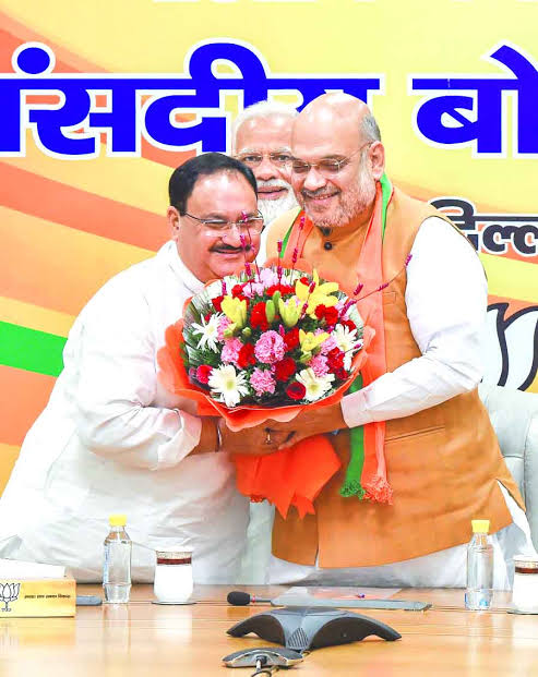 BJP Appoints Former Health Minister J.P. Nadda As Party Working President