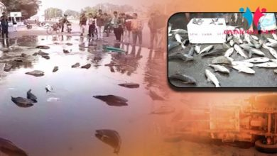 Photo of Live Fish Block Road During Bharat Bandh, Know How