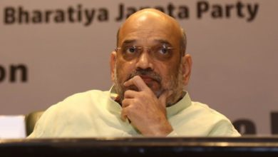 Photo of Stop All Movement Across Borders With Pak, B'desh: Shah To BSF