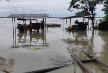 Photo of Assam Flood Affects 11 Lakh People, Death Toll Rises To 37