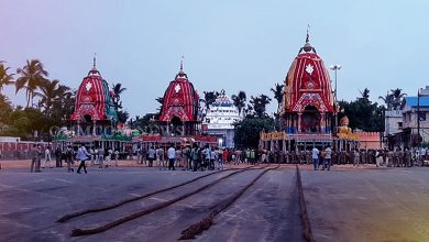 "Photo of Puri Rath Yatra: hina Moda""Dak Of Three Chariots Completed, Lords Readying For Return"