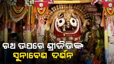 Photo of Raja Rajeshwar Besha Of The Lords On Divine Chariots