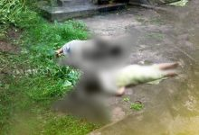 Photo of Odisha: Jajpur Lecturer Brutally Murdered, Husband & Daughter Critical In Attack