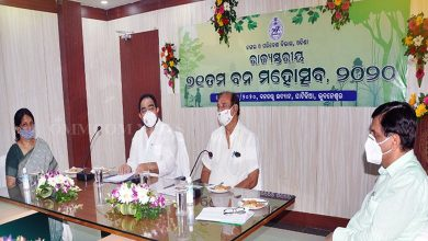 Photo of 6.30 Lakh Saplings To Be Planted In Odisha This Monsoon