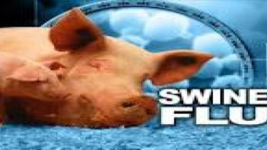 Photo of One More Person Succumbs To Swine Flu, Death Toll Now At 48