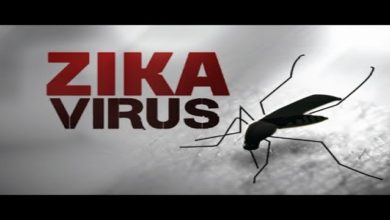 Photo of Number Of Zika Virus Cases Reaches 100 In Jaipur