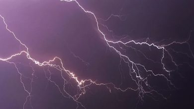 Photo of 'Damini' App Can Protect Against Lightning: UP Govt