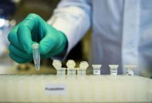 Photo of Oxford Covid Vaccine Early Stage Trial Shows Promise: Report