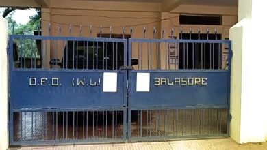 Photo of Wildlife Official Tests Positive For COVID In Balasore, Office Shut For 2 Days