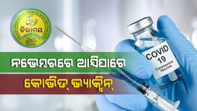 Photo of Covid-19 Vaccine By Early November 2020: Poonawalla To Naveen