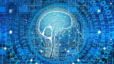 Photo of India's Artificial Intelligence Spending Grows At Over 30%: IDC