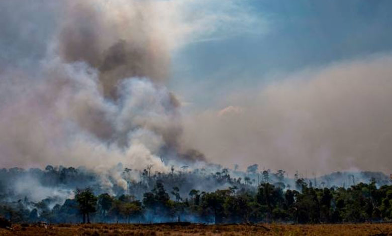 Fires in Amazon rainforest up 28% to 6,803 in July, worrying experts